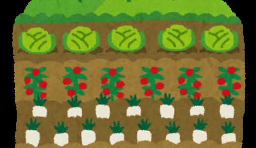 新百合ヶ丘で自分の農園を持てる「シェア畑新百合ヶ丘」