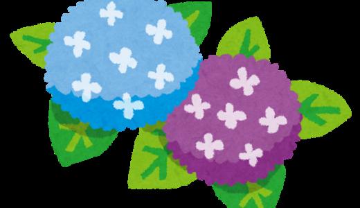 一度は行くべき!1,000本を越える紫陽花が鑑賞できる麻生のあじさい寺「浄慶寺」は羅漢像(石像)も必見!